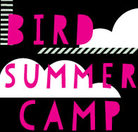 Rock and roll summer camp at Bird